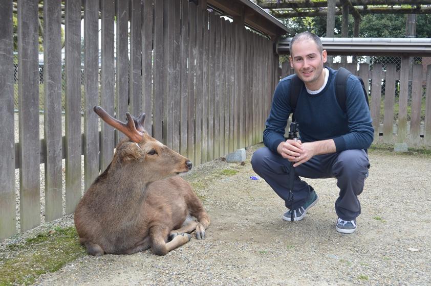 Giappone - Nara cosa vedere in una giornata - Journeydraft - CervoEGiulio