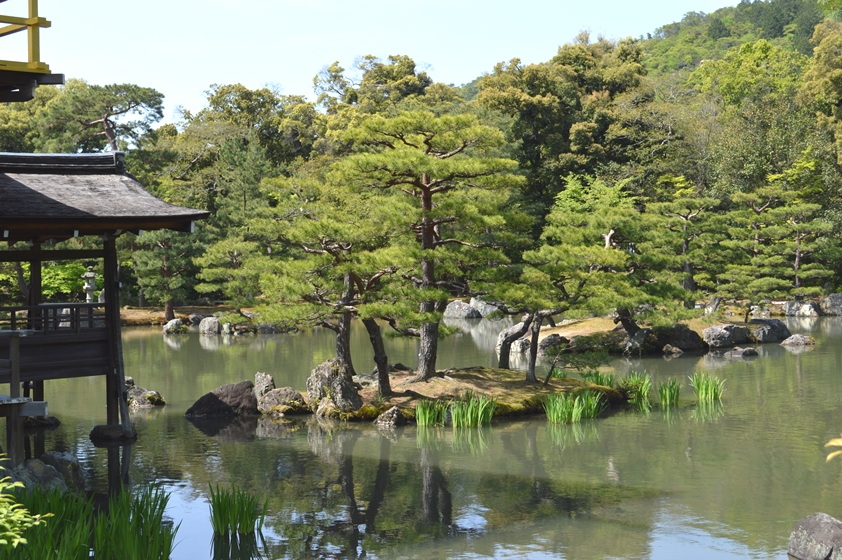 Giappone - Kyoto - Journeydraft - KyotoPadiglioneOroGiardino
