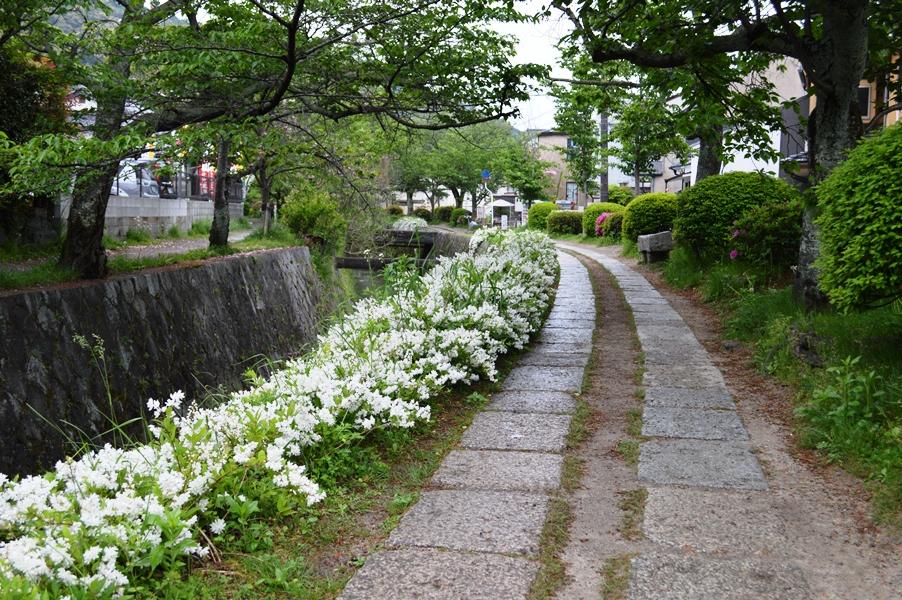 Giappone - Kyoto - Journeydraft - KyotoPasseggiatadelFilosofo