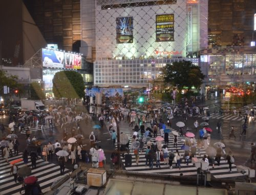 5 giorni a Tokyo e Nikko - Journeydraft