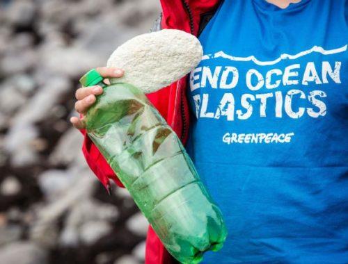 Plastic Free Week luglio 2018 - Journeydraft