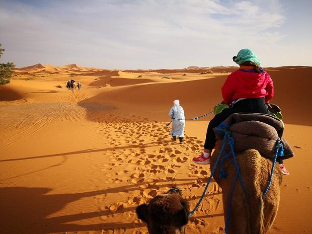 Deserto Sahara - Journeydraft