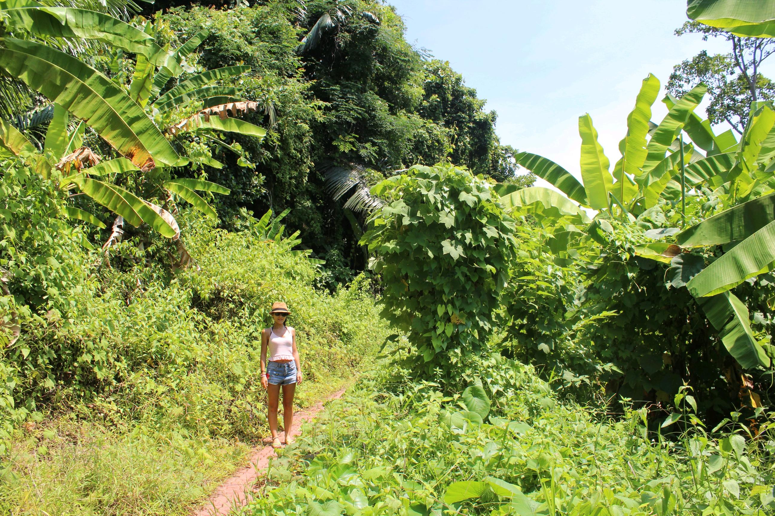 Isole Perenthian giungla - Journeydraft
