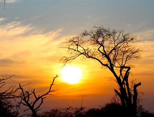 Sud Africa: Pretoria e Kruger National Park - Journeydraft