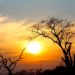 Sud Africa: Pretoria e Kruger National Park - Journeydraft