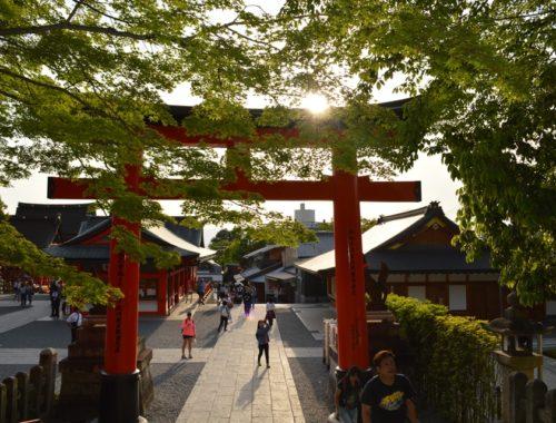 Kyoto - Journeydraft