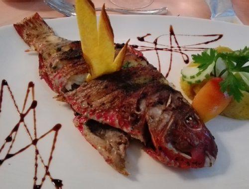 Mangiare alle Seychelles tra Praslin e La Digue - Journeydraft