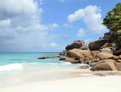 Come organizzare un viaggio alle Seychelles - Journeydraft