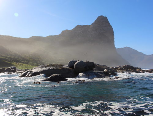 SudAfrica - Journeydraft